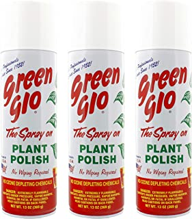 Best green cardamom plant Reviews