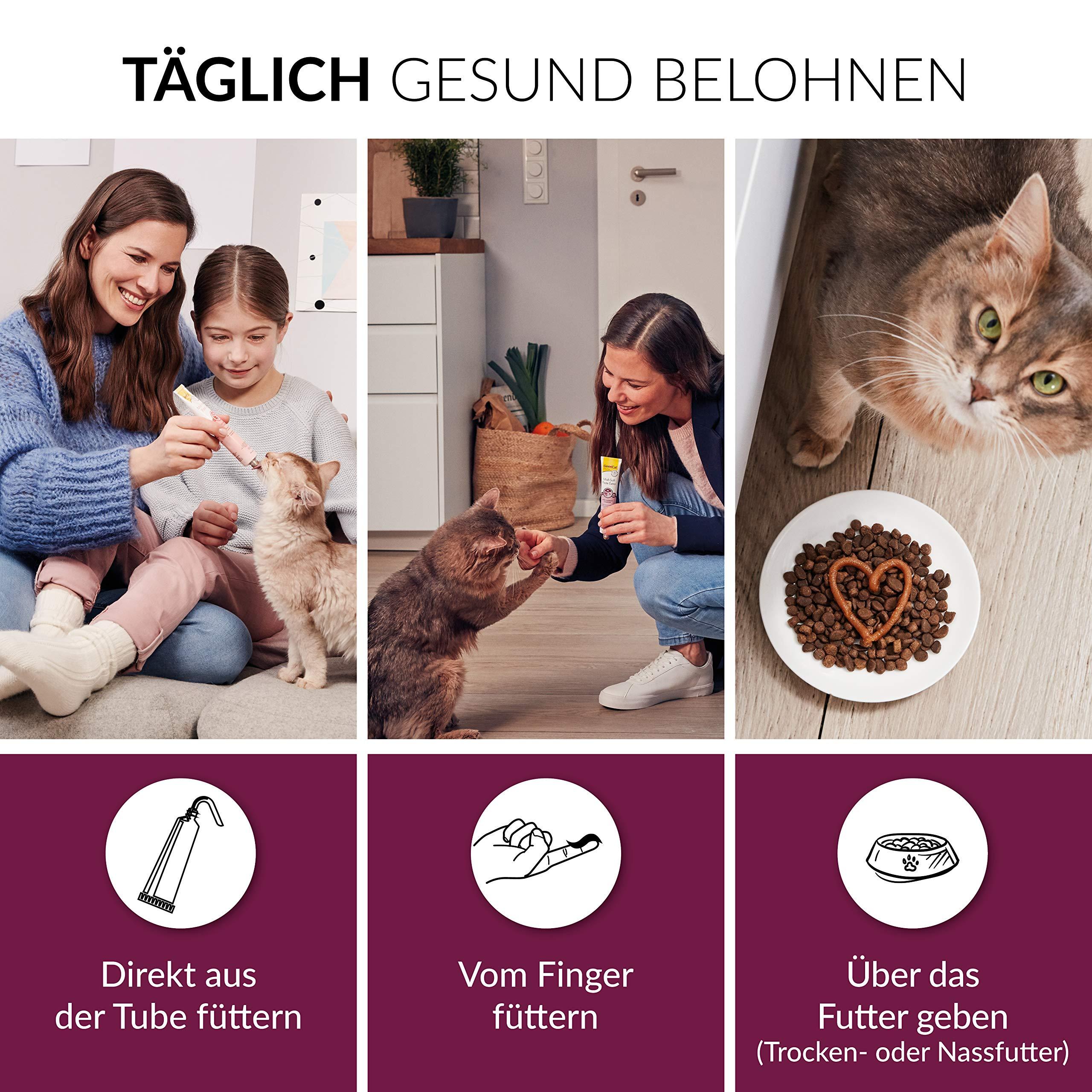 Gimcat Gimcat Malt Soft Extra 100G 1 Unidad 100 g: Amazon.es: Productos para mascotas