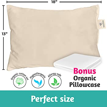 Toddler Pillow Made in USA & Pillowcase - 100% Organic Cotton - 13X18 Machine Washable - Chiropractor Recommended - S...