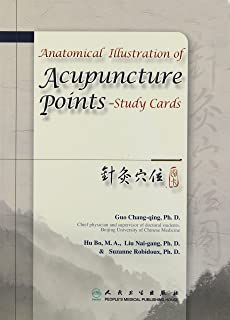 Anatomical Illustration of Acupuncture Points - Study Cards