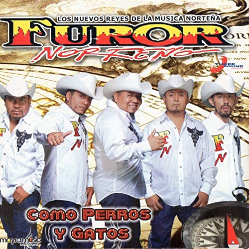 Como Perros Y Gatos by Furor Norteño on Amazon Music ...