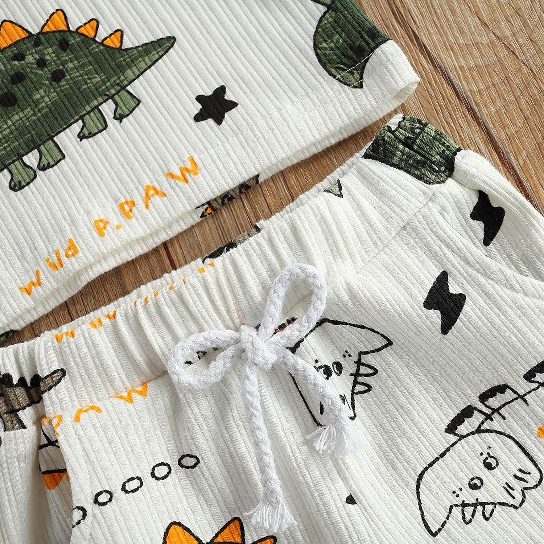 Newborn Baby Boys Summer Outfit Set Cartoon Dinosaur Print Sleeveless Tank Tops and Ribbed Shorts 2Pcs Clothes