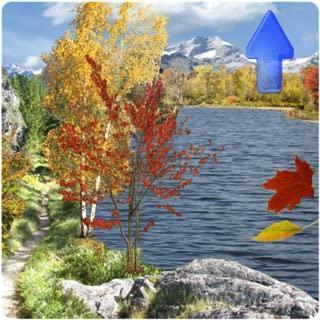Season Fall Live Wallpaper Pro