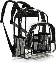 AmazonBasics Stadium Approved Mini Transparent Backpack Bag - Clear