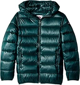 Appaman Kids - Featherweight Down Puffer (Toddler/Little Kids/Big Kids)