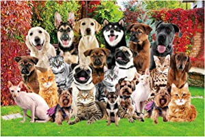 Jigsaw Puzzles for Adults 1000 Piece - Cats and Dogs Photoshoot in Garden - Park Pets Great Gifts for Friends Family (Park Pets)