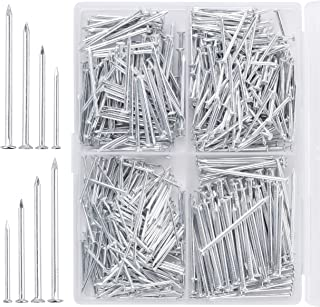 Mr. Pen- Nail Assortment Kit, 600pc, Nails, Nails for Hanging Pictures, Long Nails, Small Nails, Picture Hanging Nails, Fi...