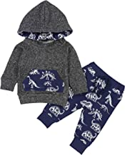Toddler Infant Baby Boys Clothes Dinosaur Print Long Sleeve Hoodie Tops Sweatsuit + Pants Outfits Set