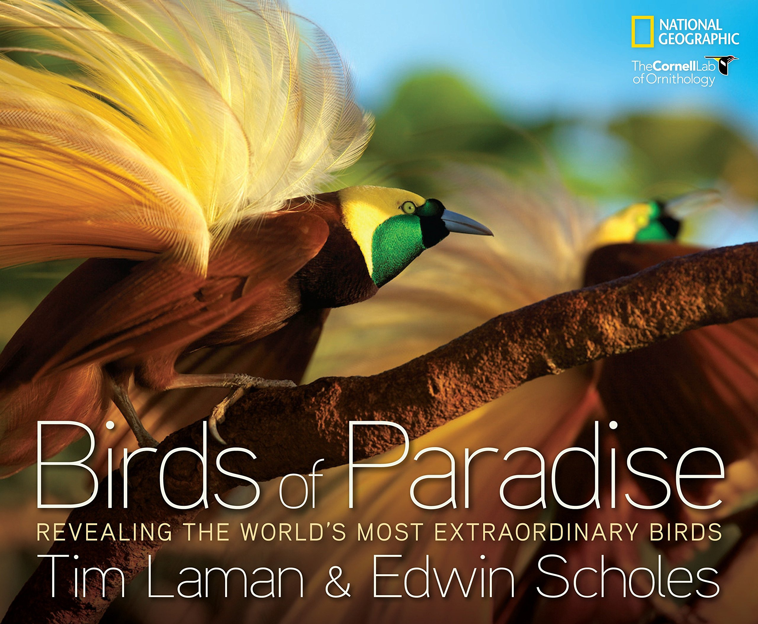 Birds Of Paradise: Revealing The World's Most Extraordinary Birds