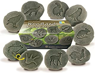 Yellow Door YUS1072 Let's Investigate Woodland Footprint Stone (Pack of 8)