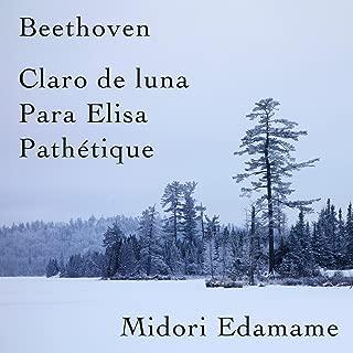 Beethoven: Claro De Luna / Para Elisa / Pathétique