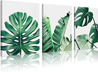 Natural art Flower Canvas Wall Art for Living Room Prints on Canvas with Wooden Frame, Canvas, Leaf 01, 12x16inx3pcs