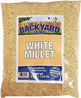 jap millet seed