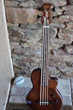 Gold Tone ME-Bass FL 4-String Fretless Bass w/ Gig Bag