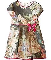 Us Angels - Bonded Mesh Cap Sleeve Dress (Toddler)