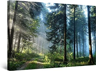 STARTONIGHT Canvas Wall Art - Landscape Road in The Forest, Nature Framed 32 x 48 Inches