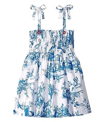 Oscar de la Renta Childrenswear Cotton Day Dress (Little Kids/Big Kids) (Blue) Girl