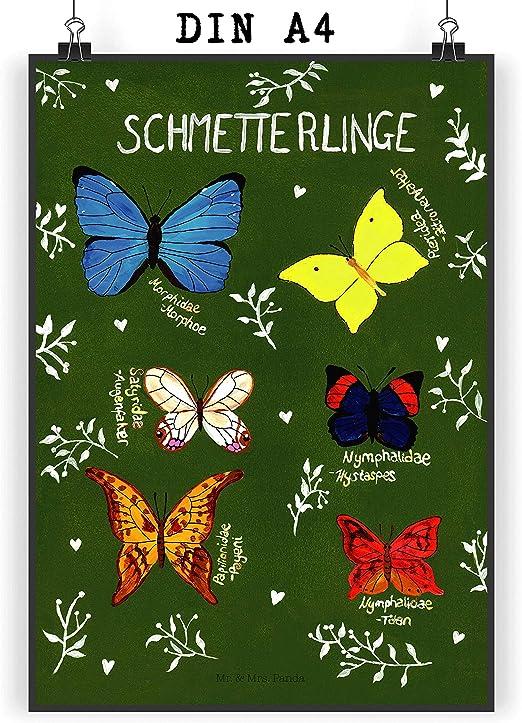 /& Mrs Postkarte Elefant /& Biene mit Spruch Mr Farbe Gelb Pastell Panda Gru/ßkarte Ansichtskarte