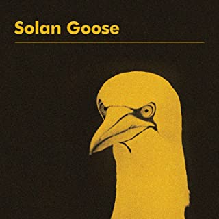 erland cooper solan goose