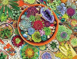 Springbok 500 Piece Jigsaw Puzzle Succulent Garden
