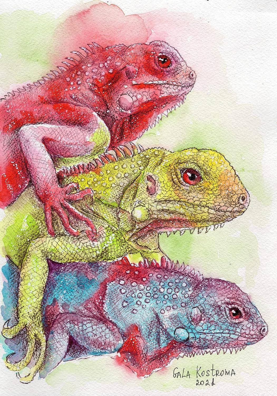 Colored Iguanas original Gala Super sale Kostroma lizard Courier shipping free shipping watercolor animal
