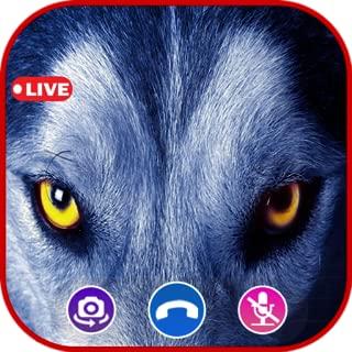 Call Video Wolf Simulator - Prank Call Apps