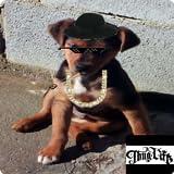 Editor de fotos Thug Life Free