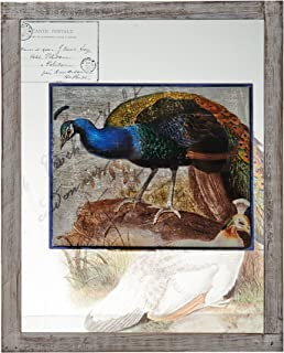 Bombay Glass Blue Peacock Wall Art, 20-Inch-by-16-Inch