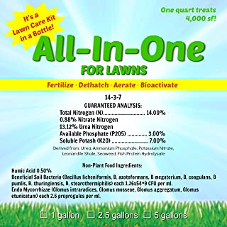 All-in-One for LAWNS Gallon