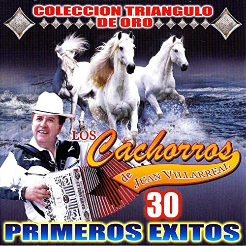 30 Primeros Exitos by Los Cachorros De Juan Villarreal on Amazon Music - Amazon.com