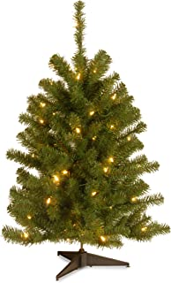 National Tree 3 Foot Eastern Spruce Tree with 50 Clear Lights (ES-30LO-1)