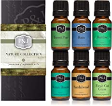 P&J Trading Nature Set of 6 Premium Grade Fragrance Oils – Forest Pine, Ocean..