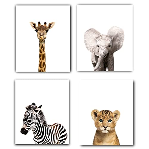 Animal Nursery Decor: Amazon.com