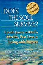 Does the Soul Survive?: A Jewish Journey to Belief in Afterlife, Past Lives & Living with Purpose