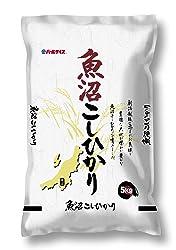 【精米】魚沼産 白米 コシヒカリ 5kg 令和元年産
