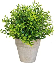 Set of 1 Artificial Succulent Plants Bamboo Flower Terracotta Pots – Realistic Greenery Mini Potted Faux Plant Arrangements | for Home Office Decor, Dorm Room, Bathroom, Kitchen Table Centerpieces