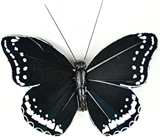 Touch of Nature 1-Piece Feather Butterfly on Clip for Arts and Crafts, 3-Inch, Black/White