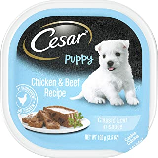 Cesar Puppy Wet Dog Food – 24 Trays