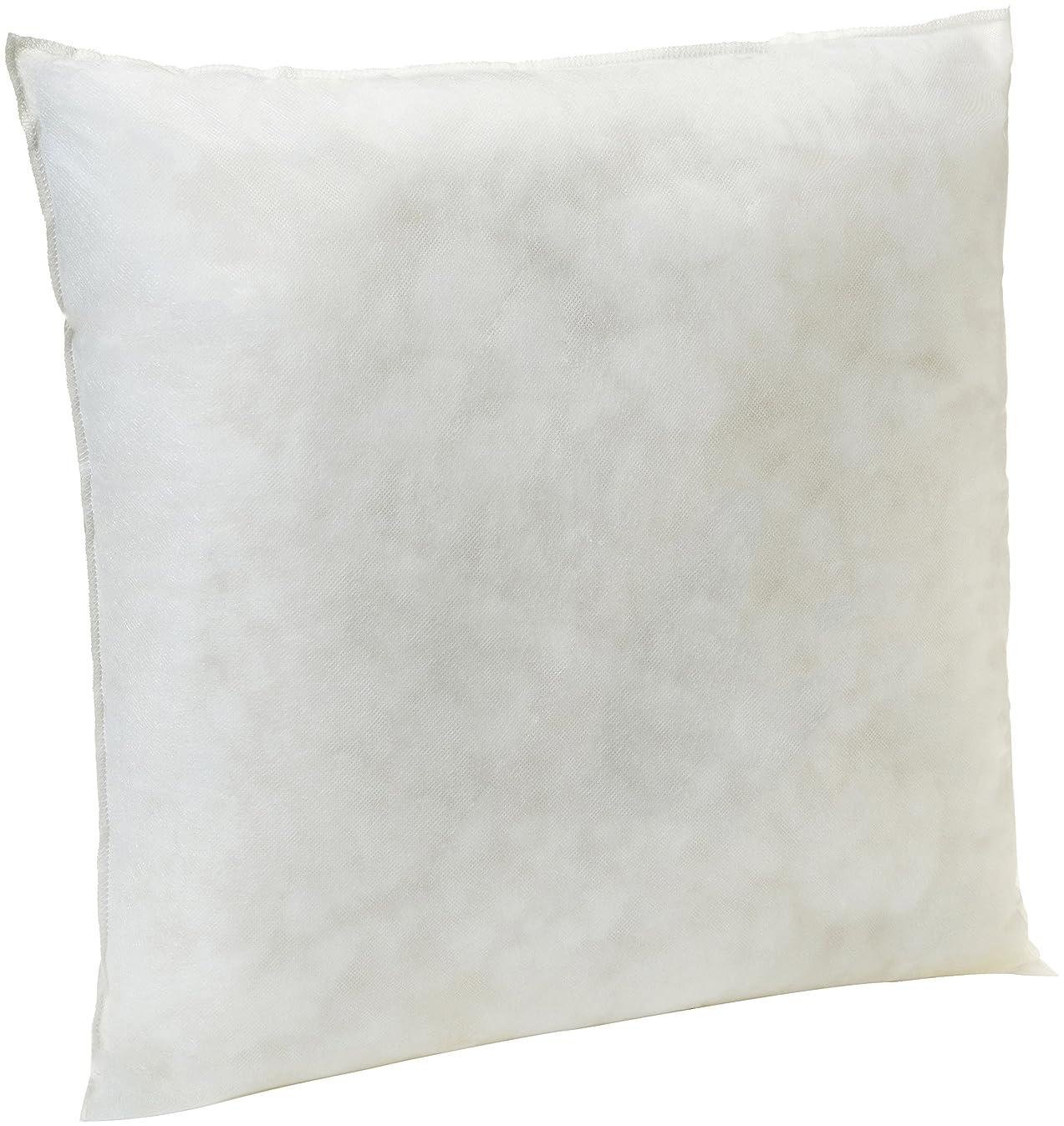 AmazonBasics Pillow Insert - 18-Inch Square, 2-Pack