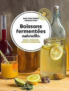 Boissons fermentées naturelles: Sodas, limonades, kéfirs et kombuchas