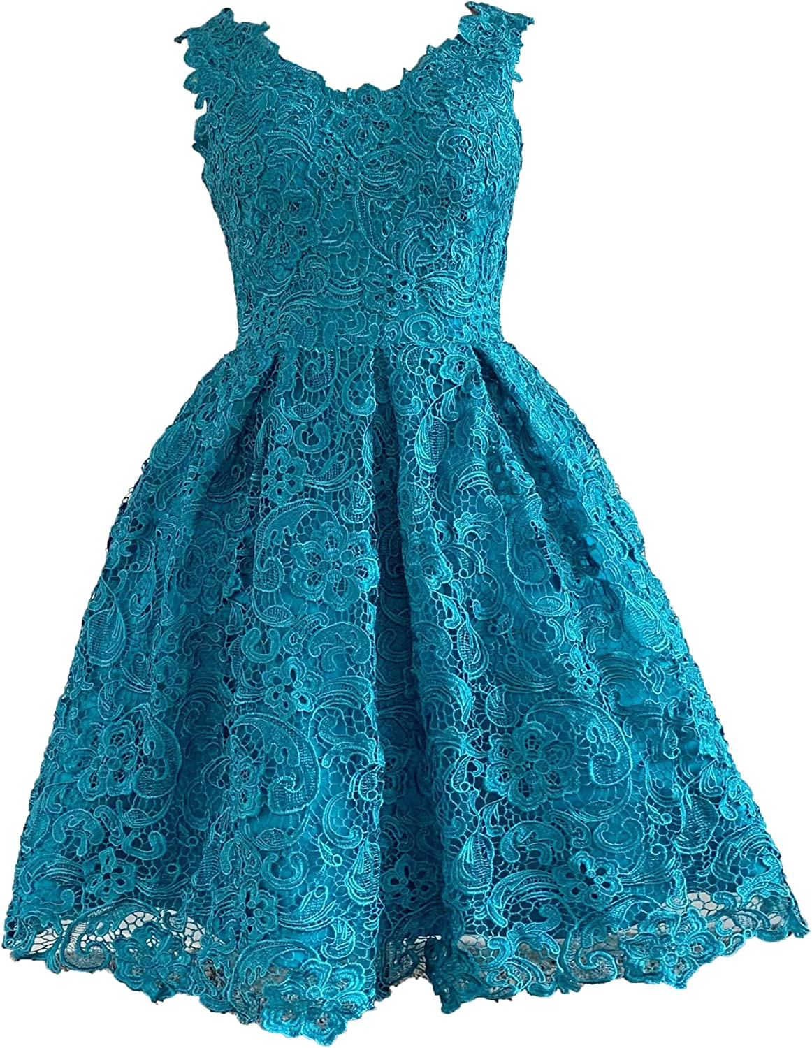 Alexzendra Short Lace Prom Dresses 2019 V Neck bluee Party Homcoming Dresses