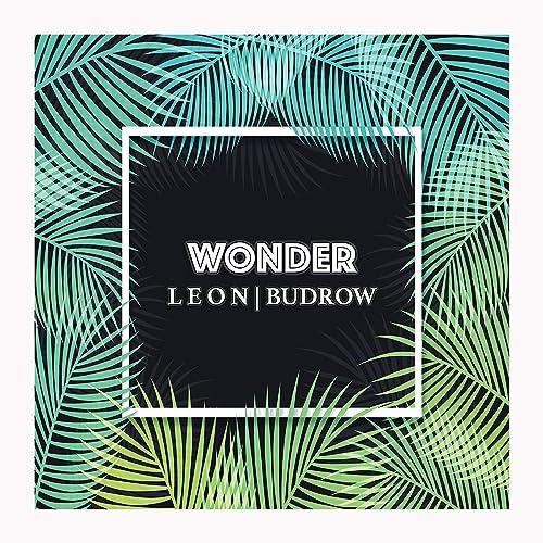Amazon.com: Wonder: Leon Budrow: MP3 Downloads