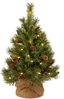 National Tree 3 Foot Pine Cone Tree with 35 Warm White Battery Operated LED Lights with Timer in Burlap (PC3-3BP-B-1)