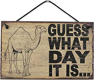 Egbert's Treasures 5x8 Vintage Style Sign Saying, Guess What Day IT is. Camel Hump Day Wednesday Decorative Fun Universal Household Signs from
