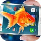 Peixe no Telefone - Aquário Piada