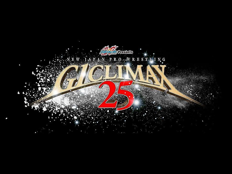無駄にパイントモールス信号G1 CLIMAX 2015 [DVD]