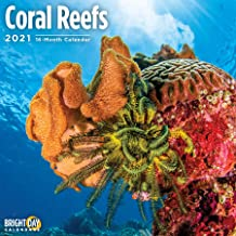 2021 Coral Reefs Wall Calendar by Bright Day, 12 x 12 Inch, Ocean Under The Sea Tropical Fish