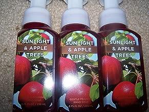 Lotof 3 Bath & Body Works Sunlight & Apple Trees Gentle Foaming Hand Soap 8.75 Fl Oz Each (Sunlight & Apple Trees)