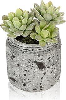 4inch verde suculenta Artificial realista arreglo en Vintage gris envejecido jarra de cerámica maceta