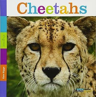 Seedlings: Cheetahs